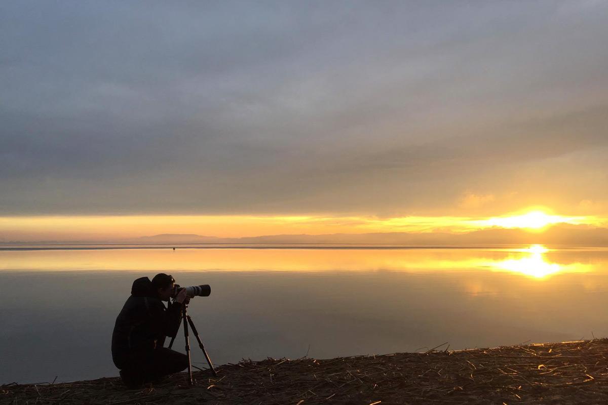 Fotografieren am Ufer des Murtensees