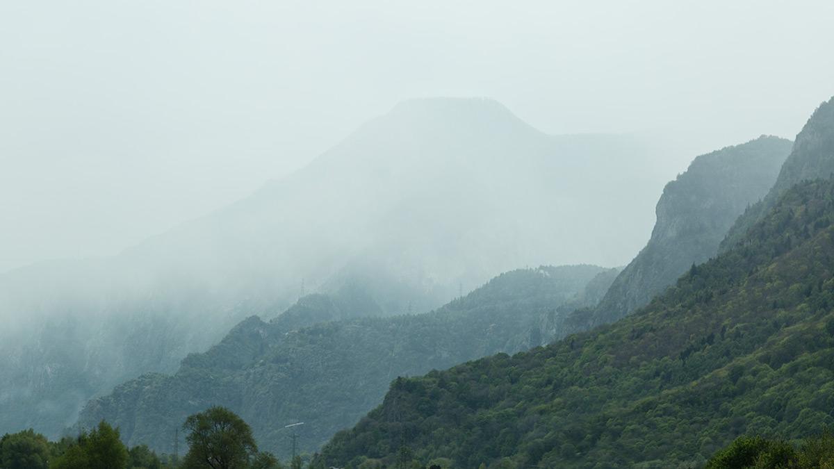 Regenwälder im Wallis