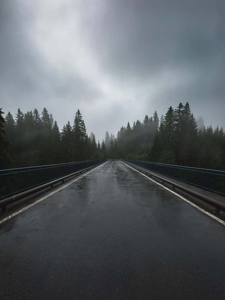 Brücke im Gantrischgebiet