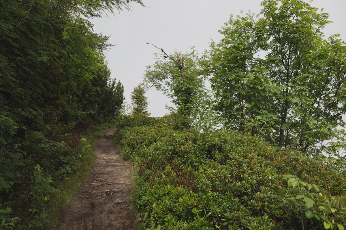 Gantrisch Panoramaweg