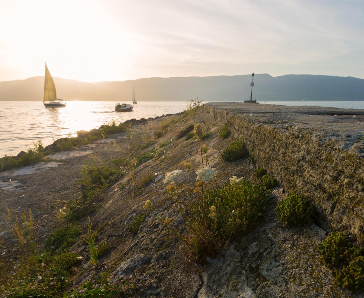 Hafen von Estavayer-le-Lac