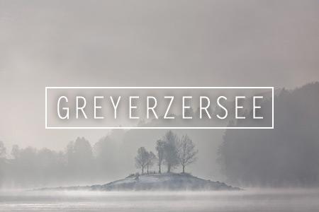 Draussen: Am Greyerzersee im Winter