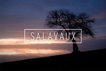Draussen: Am Murtensee bei Salavaux